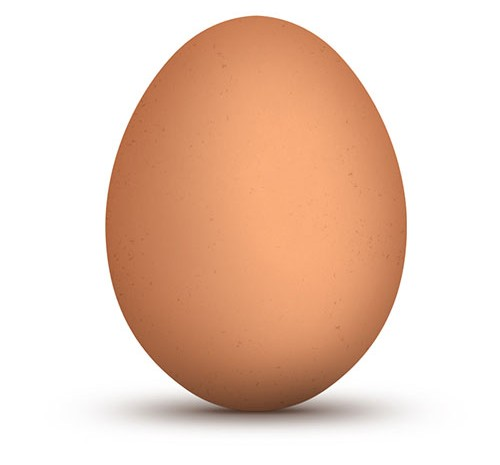 Brown-Egg3